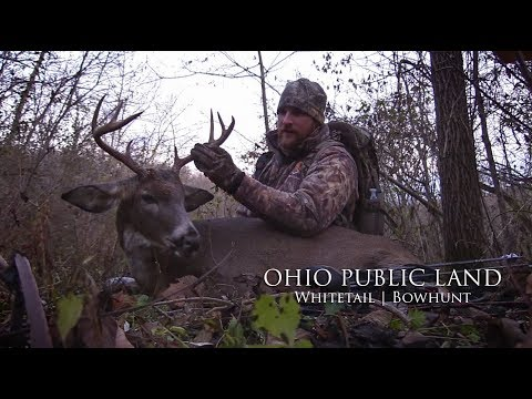 Ohio Public Land Deer Hunt