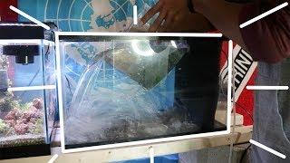 Setting Up My 10 Gallon Aquarium ! thumbnail