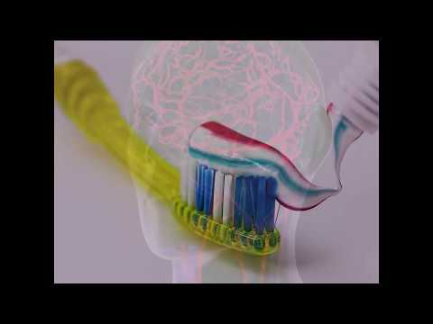 Can Brushing Your Teeth Help Preserve Your Memory?