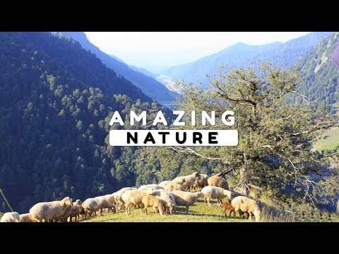 Beautiful Nature Video in Full HD - Summer Season - Peak Yalguz - Episode 1 - 12 Minute