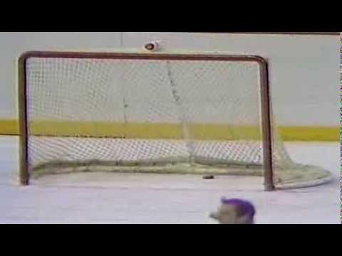 Philadelphia Flyers' goaltender Ron Hextall becomes 1st NHL goaltender to score a goal