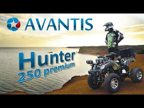 Покатушки на квадроцикле Avantis Hunter 250 premium (150/200/250)