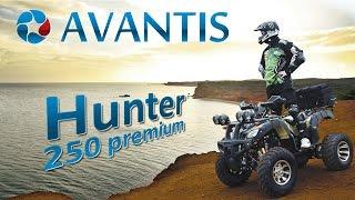 Квадроцикл Avantis Hunter 250 Premium тест-драйв / Авантис Хантер 250 премиум / люкс / 150 / 200