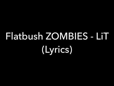 Flatbush Zombies - LiT (Lyrics)