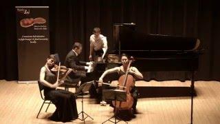 Schubert Notturno in E-flat, Op. 148 D. 897 (Trio Modetre)
