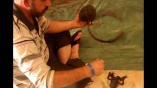الفنان / على حمة عزيز - كردستان العراق