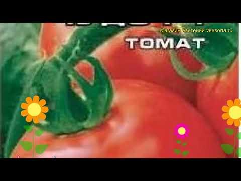 Томат обыкновенный Розовое чудо F1. Краткий обзор, описание характеристик, где купить семена
