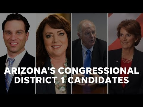 Here's who is running for Congress in Arizona's 1st District in 2018