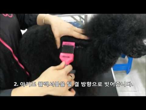엉키고 뭉치는 푸들,  비숑프리제#AKITZ#셀프미용 #미용 #셀프애견 #셀프 #애견미용 #아키즈 #아키즈플렉서블#self#cats hair cut #dog grooming