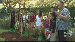 Maryknoll School plants tree in honor of Malama Honua