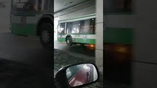 Летающий автобус в Химках