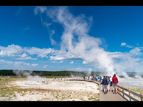 14910 - Wildlife & Geysers: Yellowstone With Your Younger Grandchild