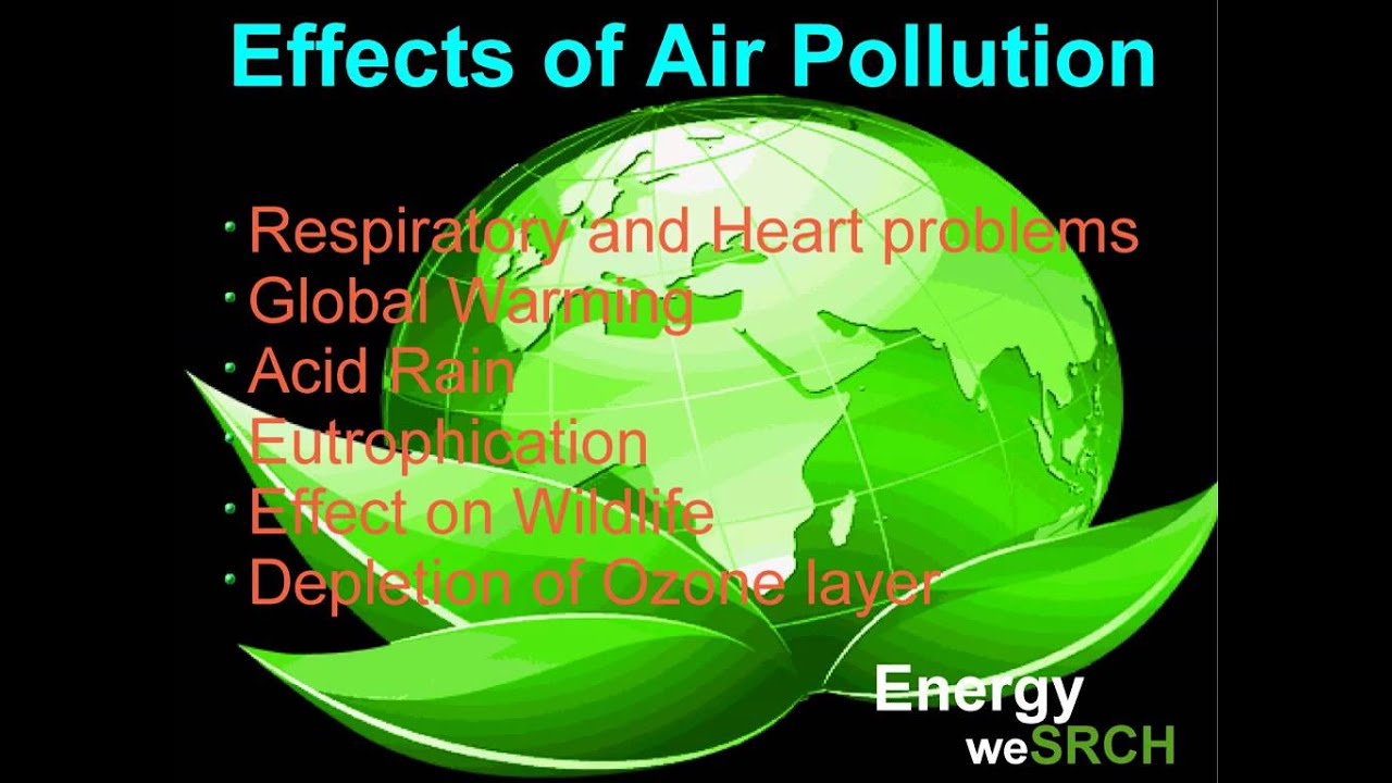 essay about causes and effect about air pollution Causes of environmental pollution all harmful pollutants in the environment pollution have an adverse effect on our health the reason behind it is humansthere are types of pollution, which mainly include water pollution, air pollution, ground pollution and noise pollution.