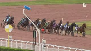 Vidéo de la course PMU PRIX DE LA MANCHE