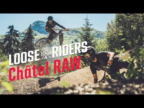 Vélo sportwear Cyclisme style LOOSE Riders 3-d Cats Messieurs mudguards