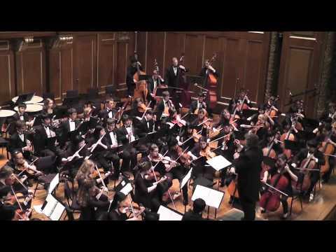 Mozart Symphony No. 40 - 1st movement, Molto allegro