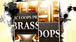 Brass Instrument Sounds - Organic Loops Pres Real Brass Vol1