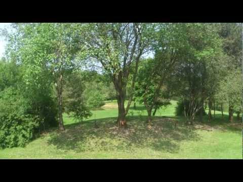 Landgoed het Bovenveen