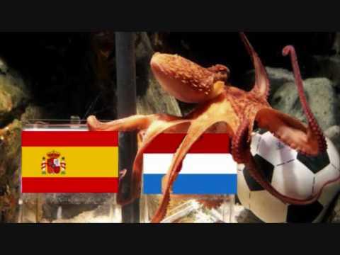 Paul le poulpe a choisit le gagnant de la coupe du monde 2010 youtube - Gagnant de la coupe du monde ...