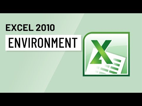 Excel 2010: Environment