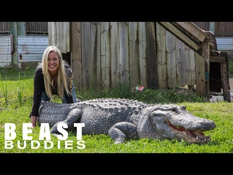 Businesswoman Ditches Career For Giant Gators | BEAST BUDDIES