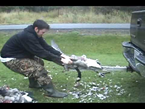 Goose cleaning with Bird Hitch