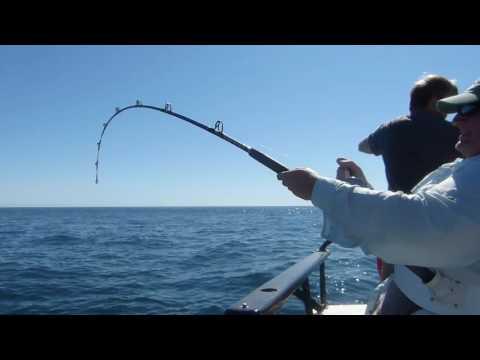 Mike Halibut Fishing On A Charter Out Of Valdez Alaska