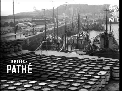 The Fishermen Of Ireland (1964)