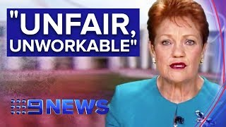 Senator Pauline Hanson slams Australia's Family Law system | Nine News Australia