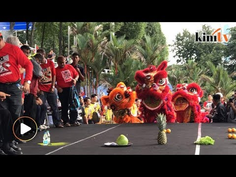 Lion dance performance greets rally-goers