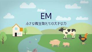 EM 小さな微生物の大きな力