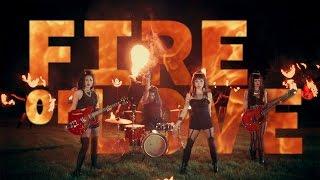 L'Assassins - Fire Of Love Official Music Video