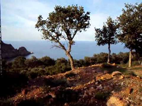 El-Kala - Une brève explication d'une petit région de segleb