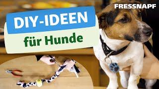 DIYIdeen für Hunde  Basteln für euren besten Freund