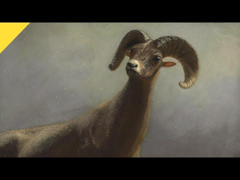 Scientists Discover Ice Age Mountain Sheep | Prehistoric News