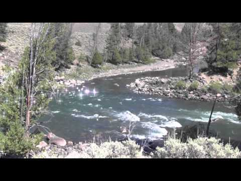Double Secret Fishing Spot in Yellowstone Part 2 (Summer)