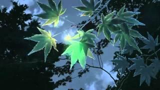 LGoony Mondlicht [Grape Tape]