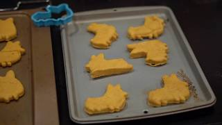 Make Your Own Peanut Butter Pumpkin Dog Cookies at Home!