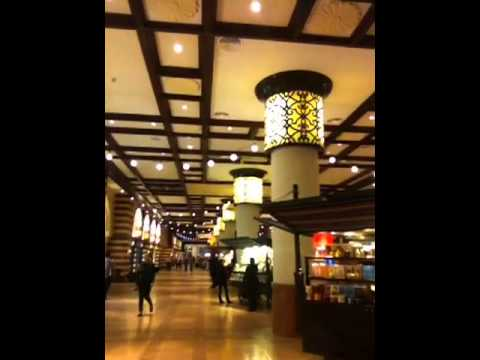 Dubai Mall | Travel Tips | Sales Technology Speaker
