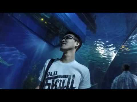 Siam Ocean World - Siam Paragon