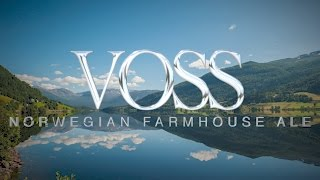 Voss Farmhouse ale with Kveik yeast Grainfather brew HD 4K