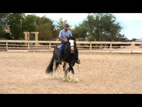 Desert Jewel Harrison - Practice