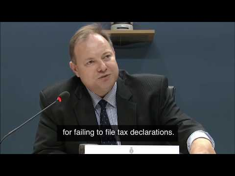 Toine Manders on Taxation. Panama Papers Hearing. English Su