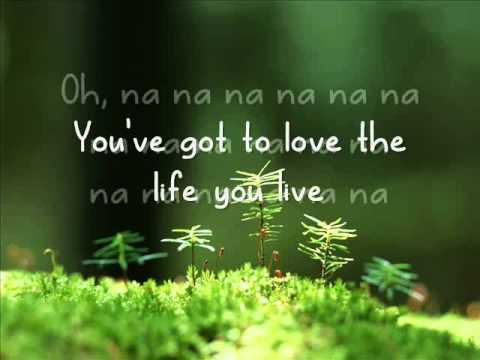 Jason Damato - Life you love - Lyrics video
