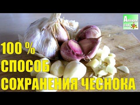 Как хранить чеснок хранение чеснока в масле Продукты питания
