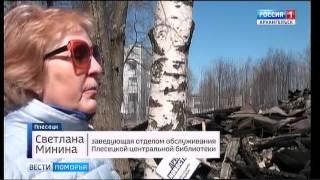 Примерный ущерб от пожара, уничтожившего библиотеку в Плесецке - более 5 миллионов рублей