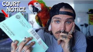 I got another Noise Violation about my Parrot! What will I do...