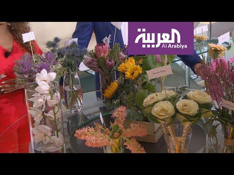 أزهار نادرة في ستوديو صباح العربية  - نشر قبل 2 ساعة