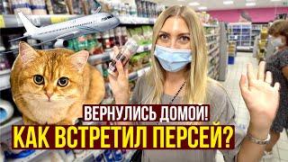 Прощай ТУРЦИЯ, Последний ВЕЧЕР - Подарки РОДНЫМ, Летим ДОМОЙ, Как встретил ПЕРСЕЙ?