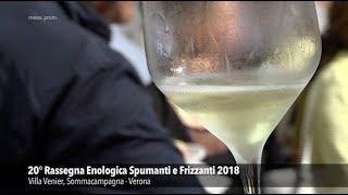 Spumanti e Frizzanti a Sommacampagna (2018)